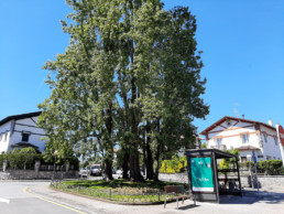 Descubre la ubicación de la Escuela Infantil Anaka Haur Eskola. Nuestra ubicación se encuentra en una posición estratégica rodeada de paradas.